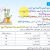 شرح درس ماذ يحتاج النبات كي ينمو – المقطع الثاني لمادة العلوم للصف الخامس