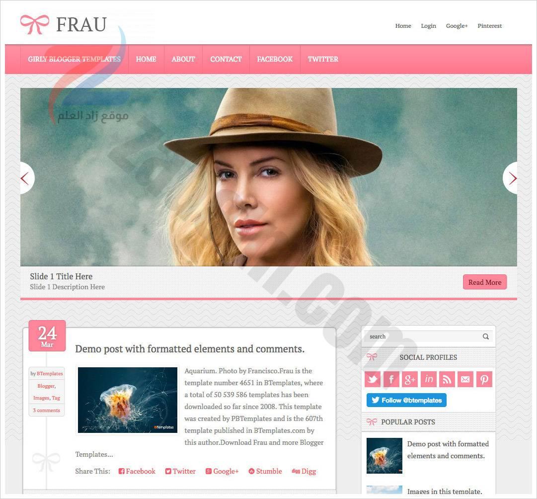 نموذج Frau-Blogger