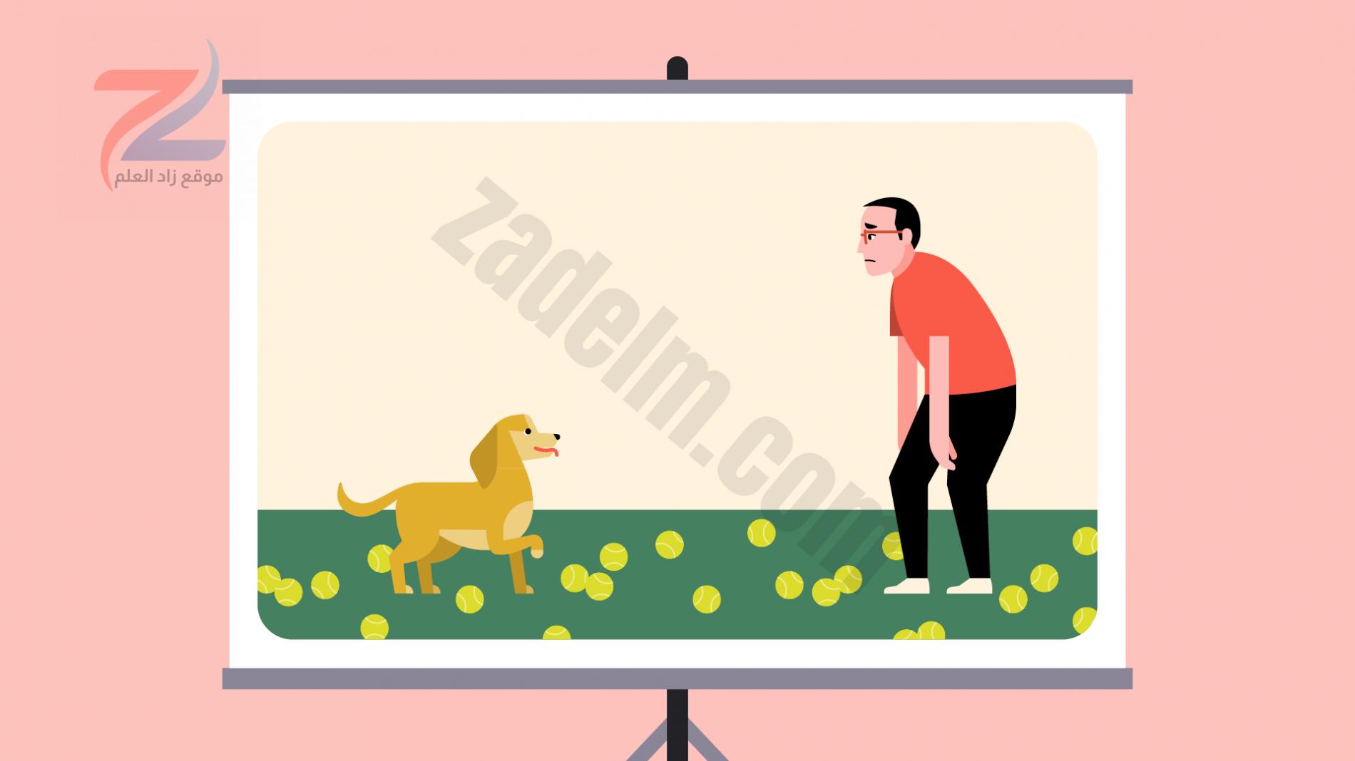 رجل متعب مع كلب محاط بكرات التنس