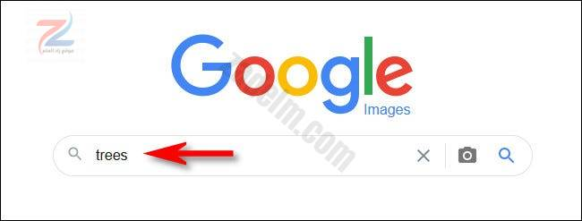 اكتب بحثك في صور Google واضغط على Enter.