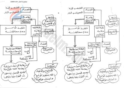 مذكرة خرائط مفاهيمية شاملة للتربية الاسلامية الصف الخامس