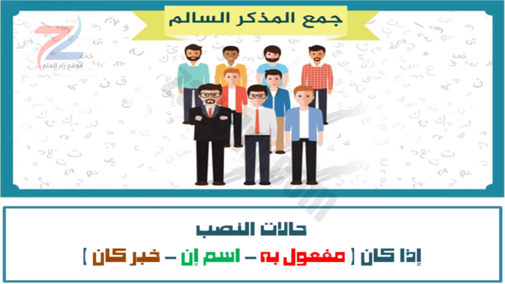 شرح جمع المذكر السالم اللغة العربية للصف السادس سلطنة عمان