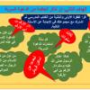 شرح درس الدعوة إلى الإسلام سراً للصف الخامس