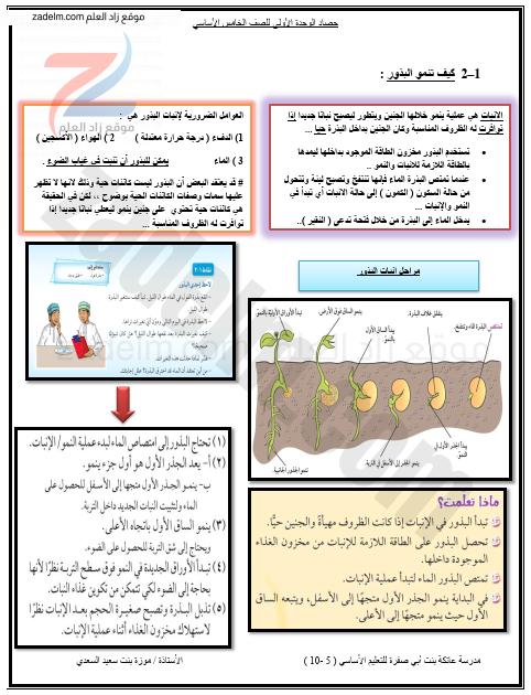 مذكرة الوحدة الأولى ( استقصاء نمو النبات ) لمادة العلوم للخامس