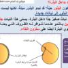 ملخص شرح درس البذور مع حل الأنشطة للصف الخامس