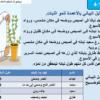 شرح درس ماذا يحتاج النبات كي ينمو مع حل الأنشطة للخامس
