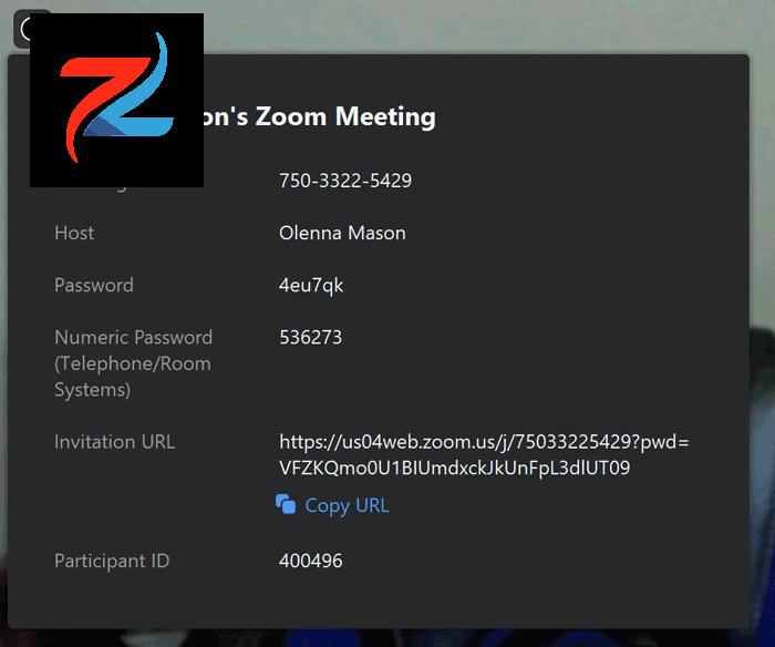 لقطة شاشة لمربع معلومات الاجتماع في تطبيق Zoom.