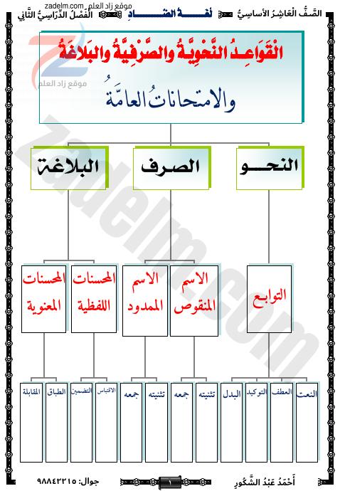مذكرة لغة الضاد للعاشر في قواعد النحو والصرف والبلاغة