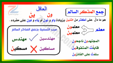 شرح المفرد و المثنى و الجمع بأنواعه في اللغة العربية