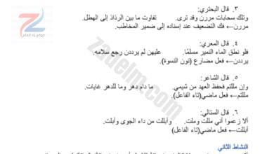كراسة حل أنشطة كتاب العربي للصف الثامن