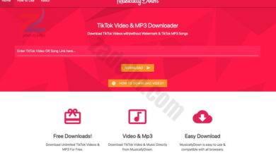كيفية تنزيل مقاطع فيديو TikTok عبر الويب