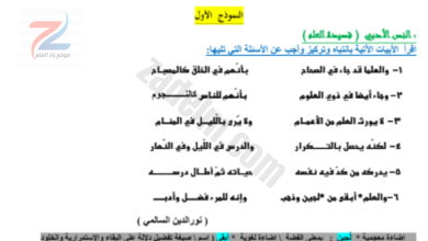 جميع ملخصات الصف الخامس سلطنة عمان